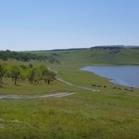 Brațul ciuhurean rezervorului Costești, Văratic, Rîșcani