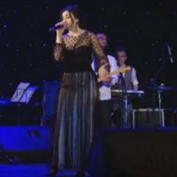 Corina Ţepeş - Nunta de argint