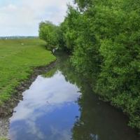 Rîul Cubolta de la satul Plop pînă la Putineşti