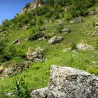 Toltrele Moldovei